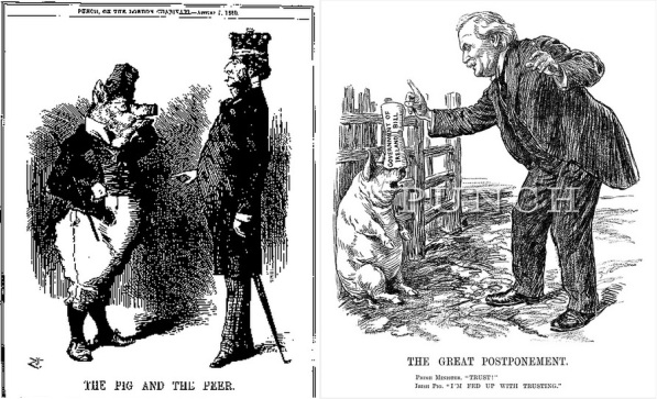British racism towards Ireland in the 19th and 20th century Paddy the Pig