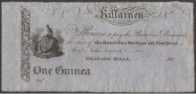 c. 1804 Deenagh Mills, Killarney, One Guinea (One pound, two shillings & ninepence)